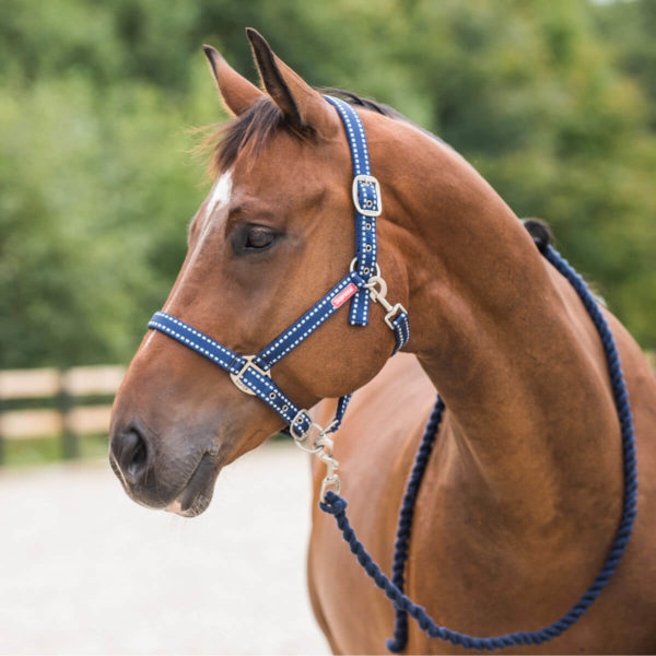 Horze Supreme Cooper Halter and Lead