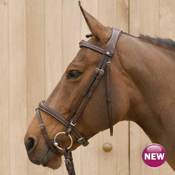 Lami-Cell Elegance Combined Bridle With Flash