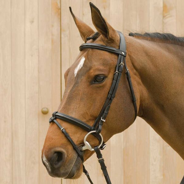 Lami-Cell Original Bridle with Flash
