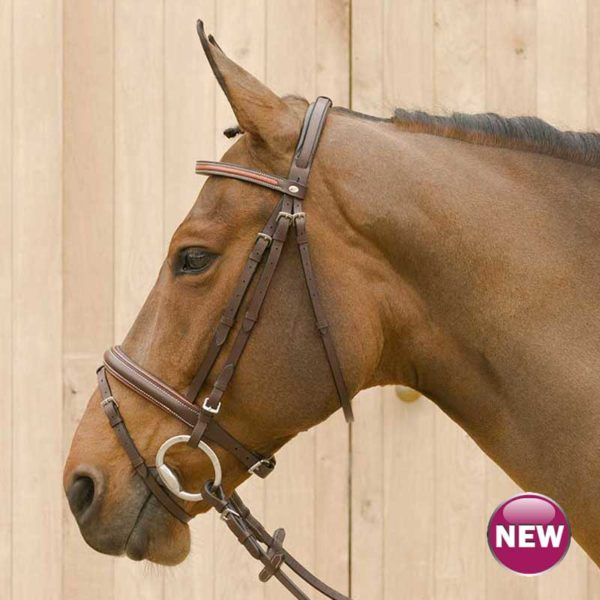 Lami-Cell Two Tone Bridle