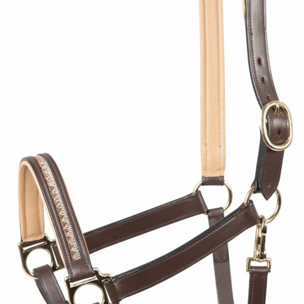 PFIFF Castania Leather Halter (2)